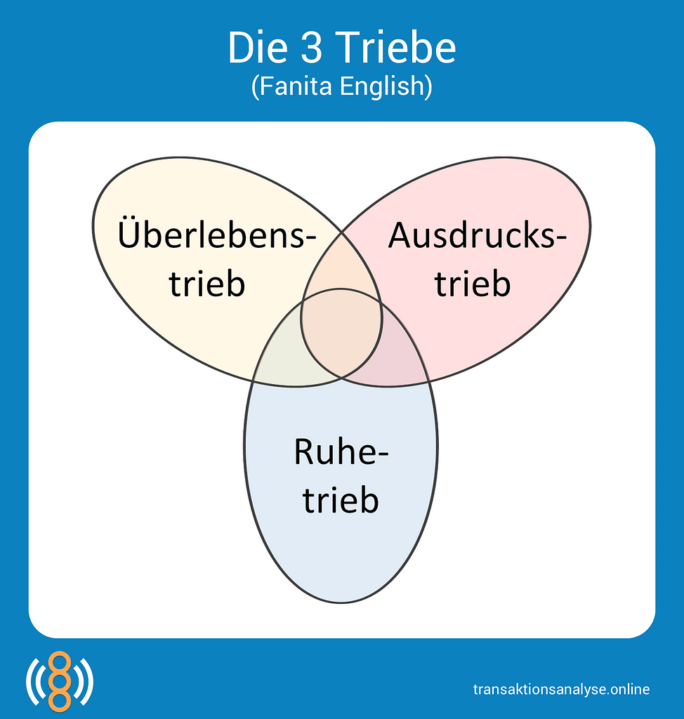 3 Triebe (Fanita English)