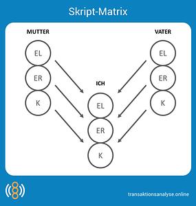 Skript-Matrix
